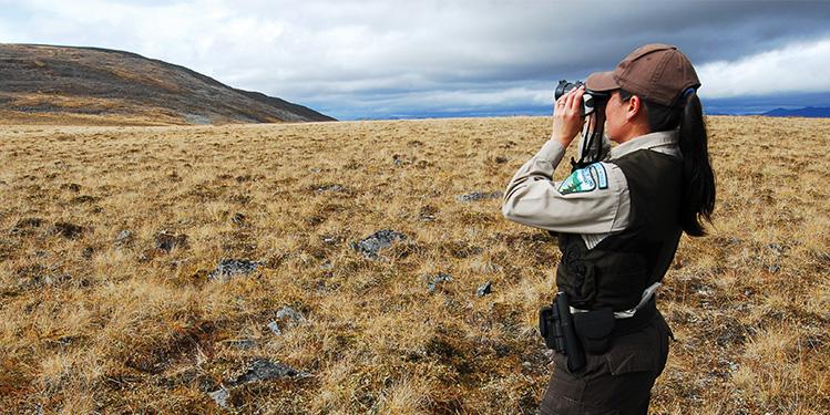 careers-searchjob-searching-employee-binoculars